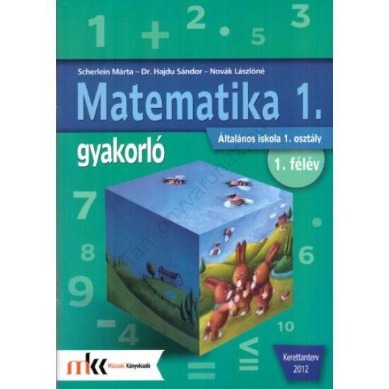 Matematika 1. gyakorló (MK-4002/1)