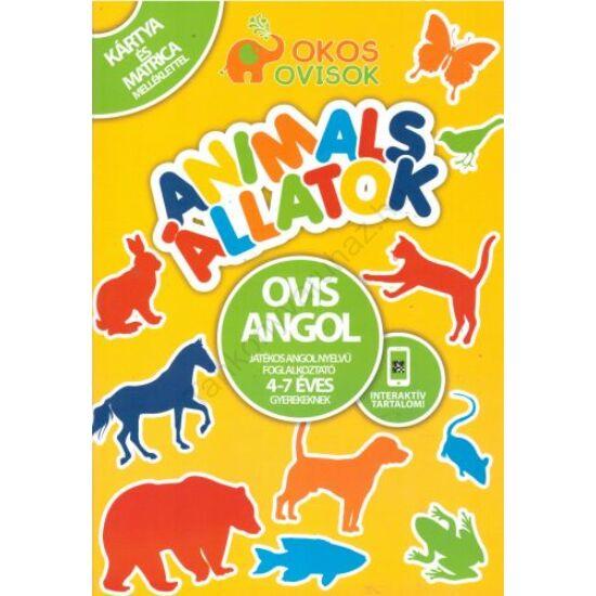 OVIS ANGOL-ANIMALS